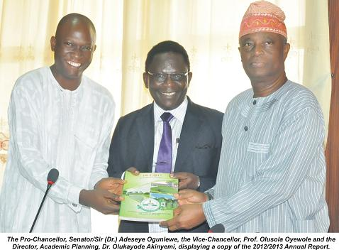 Governing Council Receives Annual Report
